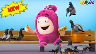 Oddbods   Nouveau   OISEAUX MATINAUX   Dessins Animés Amusants pour les Enfants