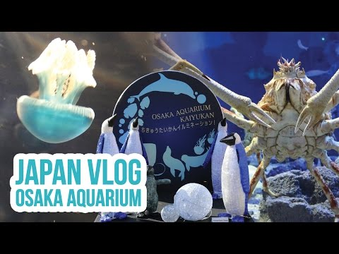 Japan Vlog | Pokemon Announcement + Osaka Aquarium + Universal Studio Walk - Day 3 | ZoeTwoDots