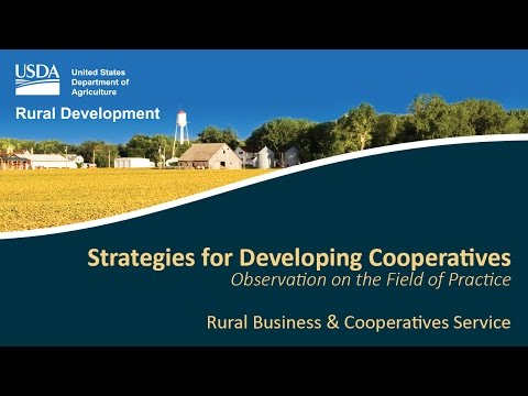 Strategies for Developing Cooperatives: Observations on the Field of Practice