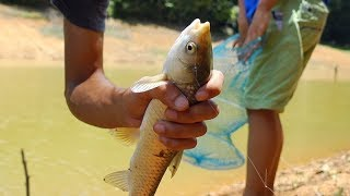 Bao nhiêu tiền chúng tôi có thể kiếm được trong 1 ngày đi câu cá ? • Trại Hè • Tập 8