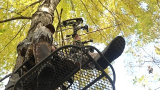 Video 5 Tips For Pulling An All-Day Treestand Sit download MP3, 3GP, MP4, WEBM, AVI, FLV Oktober 2018