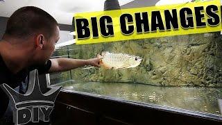 AQUARIUM GALLERY + My fish and tanks - Update 2 thumbnail