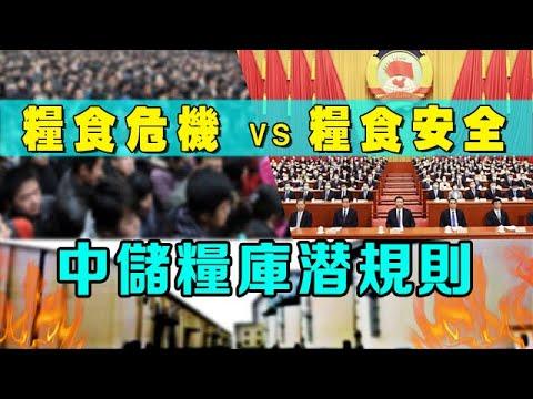 中國糧食緊張並非危言聳聽! 揭中儲糧庫潛規則 【王維洛訪談】