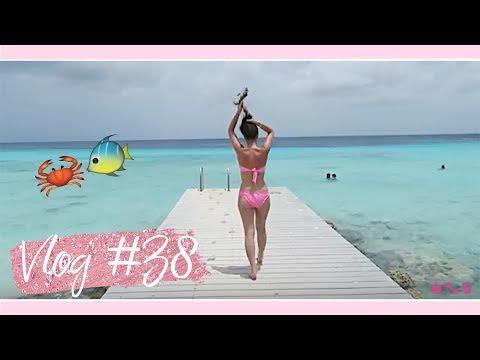 VLOG #38 CURACAO MET M'N DUSHI!!!