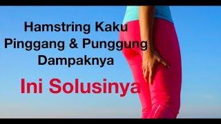 Latihan Penguatan Otot Betis Dan Paha Untuk Nyeri Lutut ~-~~-~~~-~~-~-~-~~-~~~-~~-~-~ Lamina Pain & .