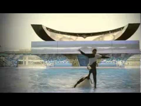 SeaWorld Parks & Entertainment-One Touch of Nature