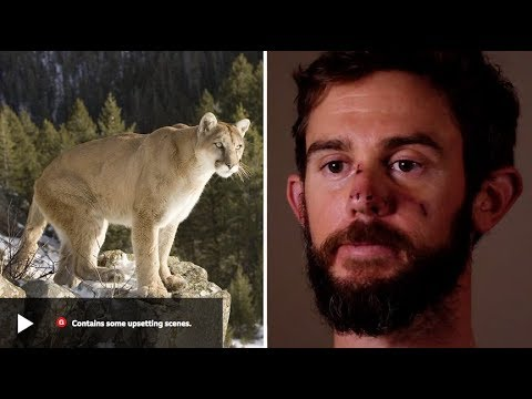 Runner Chokes Mountain Lion to Death (Gracie Breakdown) Mp3