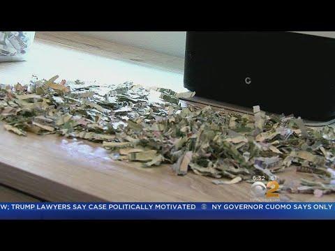 Josh Michael - Toddler Shreds $1,000 In Cash!