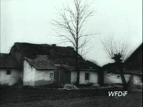 Komunikat Ministerstwa Prawdy nr 117: Kuratorium interweniuje w Marcinkowicach