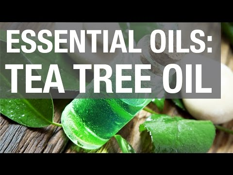 Tea Tree Essential Oil Uses and Benefits - Essential Oil Haven