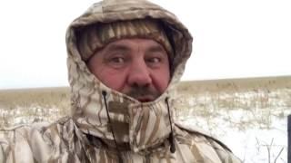 Охота на гуся. Баумана. Октябрь 2016