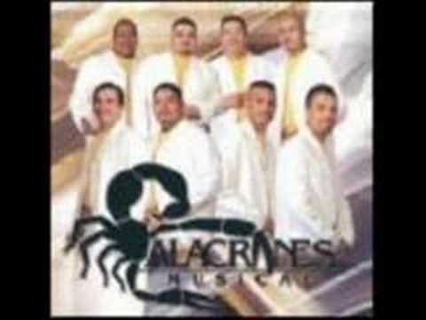 Alacranez Musical-Querida