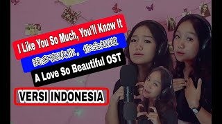 Download I Like You So Much, You'll Know It (我多喜欢你,你会知道) - A Love So Beautiful OST [indonesia Cover]