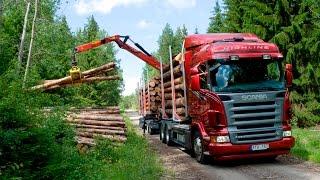 Лесовоз Scania для Карелии