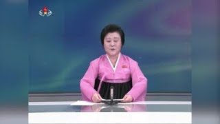 Trump Wants Someone To Hire North Korean Propaganda Anchor
