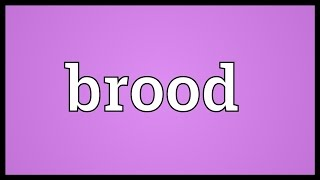 Brood Meaning