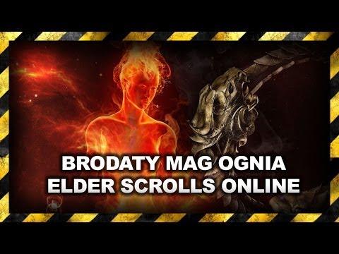 Elder Scrolls Online / Mag Ognia / Build