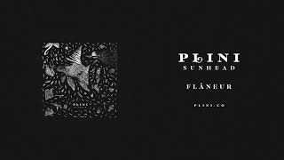 Plini –