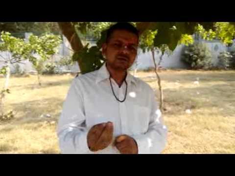 free jyotish matchmaking