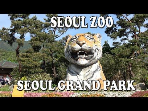 Seoul Zoo in Seoul Grand Park (서울대공원 어린이동물원) Sony FDR-AX53 4K Ultra HD Handy Cam