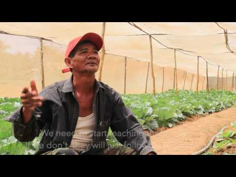 Building trust and resilience in a safe vegetable value chain in Cambodia HD