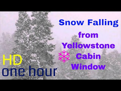 (HD) ❄Snow falling from Yellowstone cabin window❄