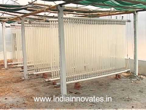 Low cost photo biorector system for cultivation of Micro Algae