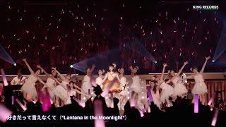 田村ゆかり/好きだって言えなくて(*Lantana in the Moonlight*ver.)
