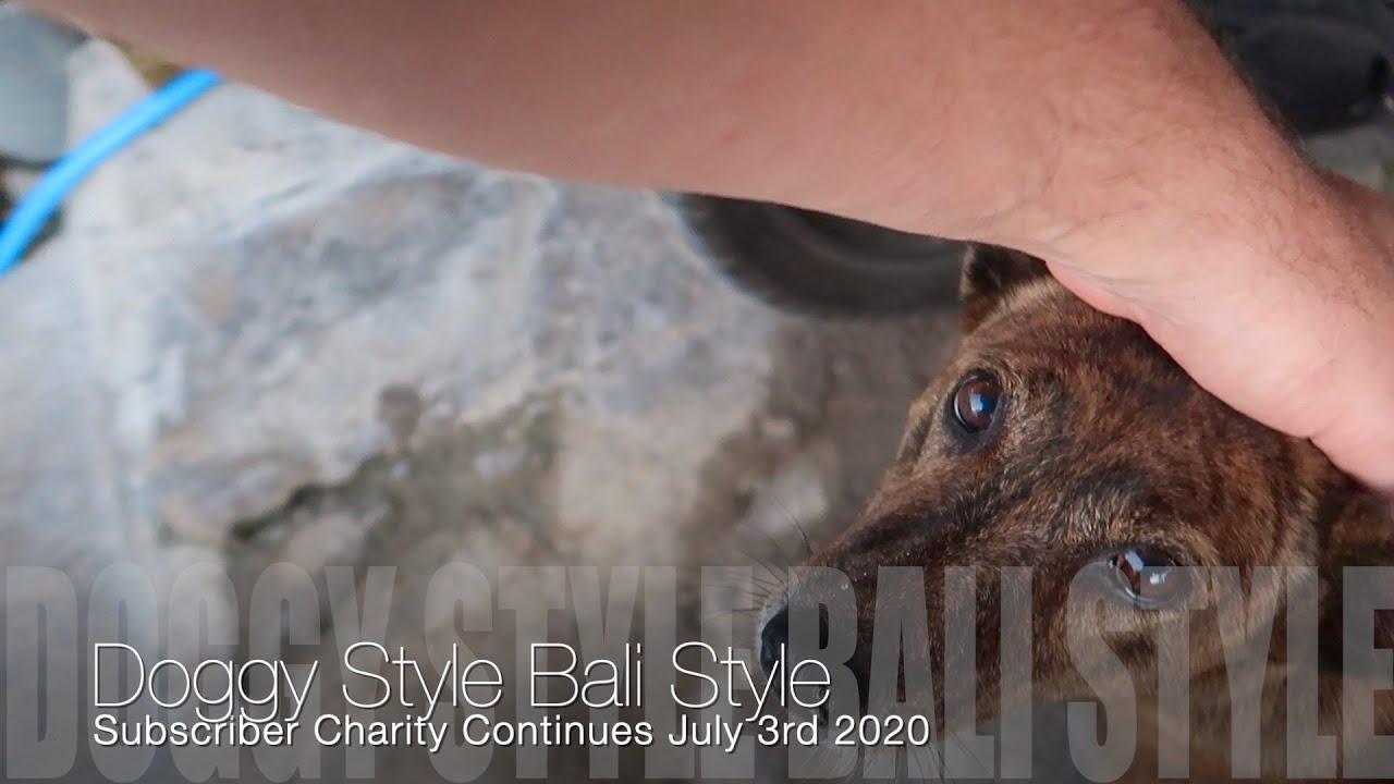 Doggy Style Bali Style July 3rd 2020