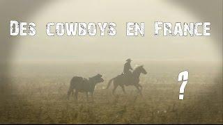 Association Vendéenne d'Équitation de Travail