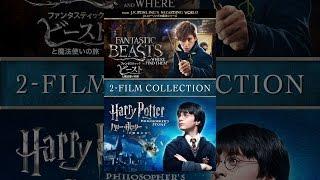 ファンタスティック・ビーストと魔法使いの旅 & ハリー・ポッターと賢者の石 パック (2pk) (吹替版) thumbnail