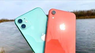 Подробное сравнение iPhone 11 и XR   - какой выбрать в 2021 году?