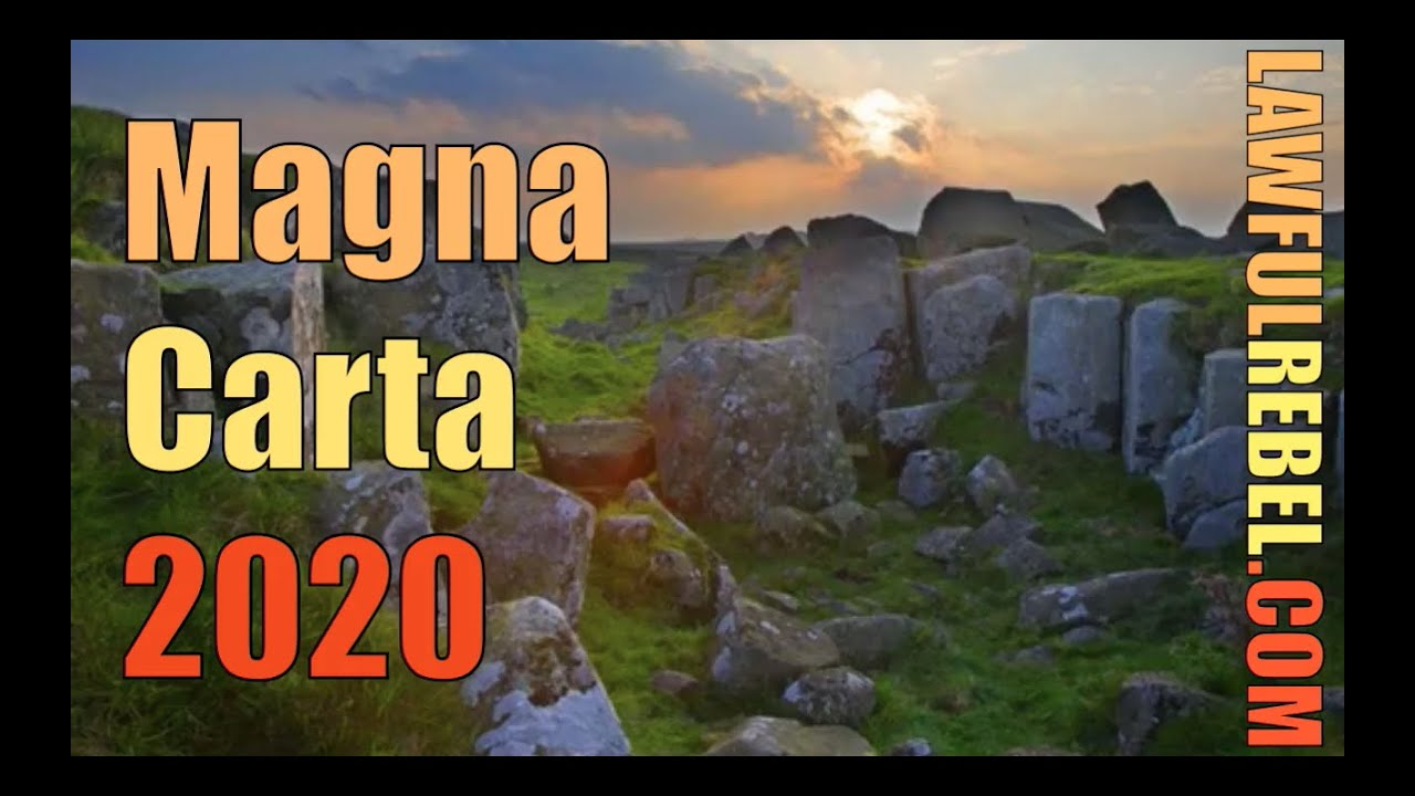Ep119 The answer to COVID 1984 is Magna Carta 2020 according to Michael O' Bernicia