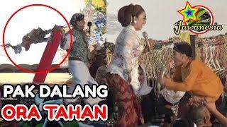 Download Video PERCIL Cs Lusi Brahman - 16 SEPTEMBER 2018 - Ki Exwan - Bedi wetan Bungkal Ponorogo MP3 3GP MP4