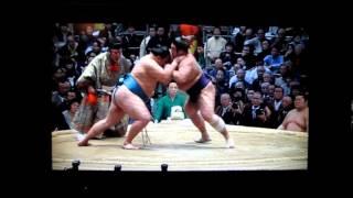 栃煌山vs玉鷲 平成27年大相撲春場所 Tochiozan vs Tamawashi SUMO.