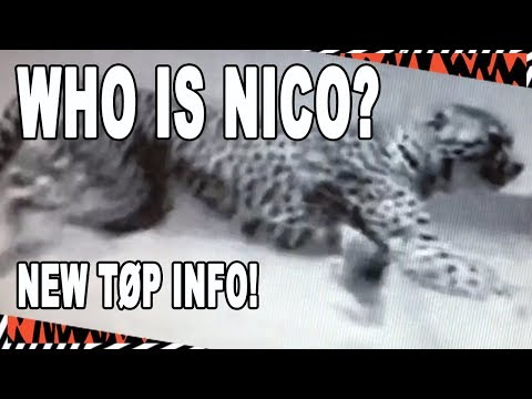 New TØP Dema Update! - Who is NICO? - 2018 Twenty One Pilots Album