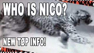 "New TØP Dema Update! - ""Who is NICO?"" - 2018 Twenty One Pilots Album"