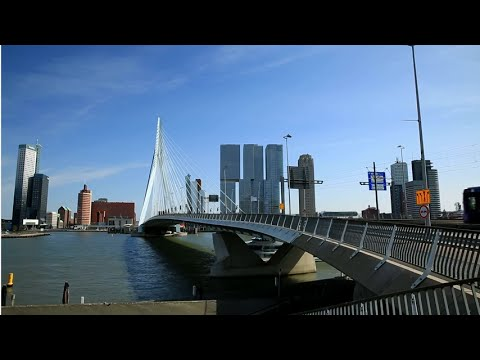 Tükiye İcin Var Mısın? Rotterdam