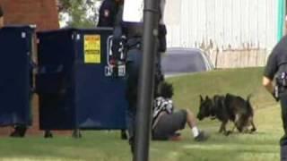 Police Dog Chase