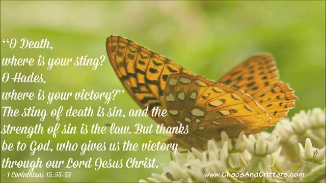 Bible Verse of the Day - 1 Corinthians15:55-57