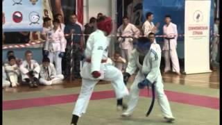 Видеосюжет о втором чемпионате и первенстве Челябинской области по всестилевому каратэ, март 2016 го