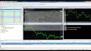Forex Trading Bangla video Tutorial Part3