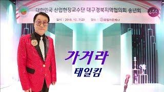 가수태일킴/가거라/산업교수단대구경북지역협의회송년회초대가수