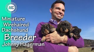 I am a Breeder  Johnny Hagerman  Miniature Wirehaired Dachshund