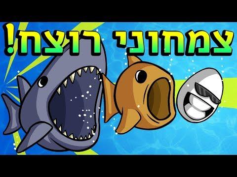 כריש הוא בעצם צמחוני?