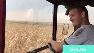 Vršenje kukuruza 2018 / Zmaj 142 / Vojvodina-Padina