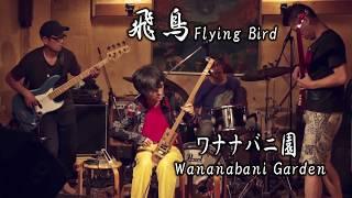 "Japanese Experimental Rock ""Asuka(飛鳥)"" by Wananabani Garden(ワナナバニ園)"