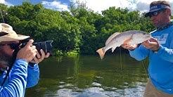 The Anti (REDTIDE REPORT) PLEASE SHARE! - Anna Maria Island, FL