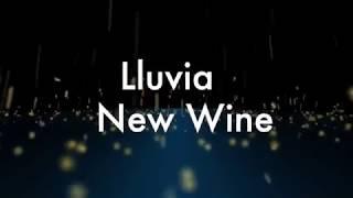LLUVIA - con letra New Wine