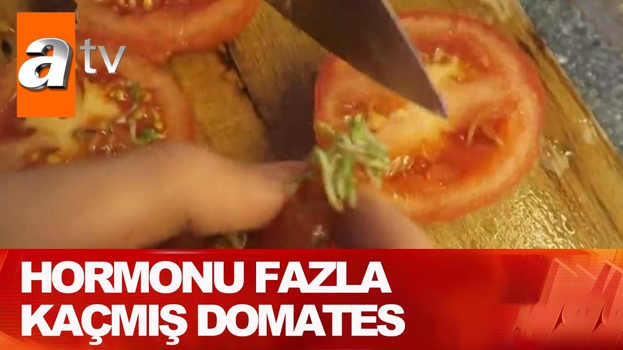 Domatesin içinde domates filizi - Atv Haber 28 Mayıs 2021